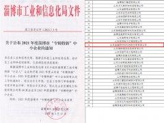 <b>喜讯丨山东宝盖新材料科技股份有限公司荣获淄</b>